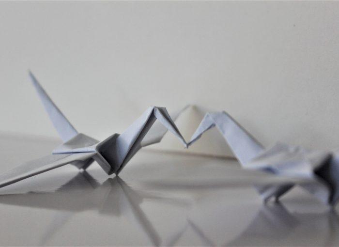 Papier Nachhaltigkeit - wie nachhaltig ist Papier?