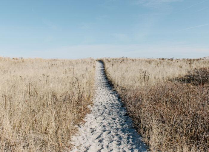 Berufliche Erfüllung finden oder einfach den Weg bewusst langgehen.