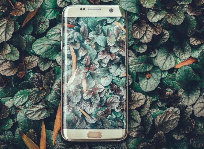 Handy und Gesundheit: Handy weniger nutzen und Lebensqualität erhöhen - So geht's1